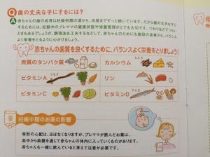 歯科検診冊子